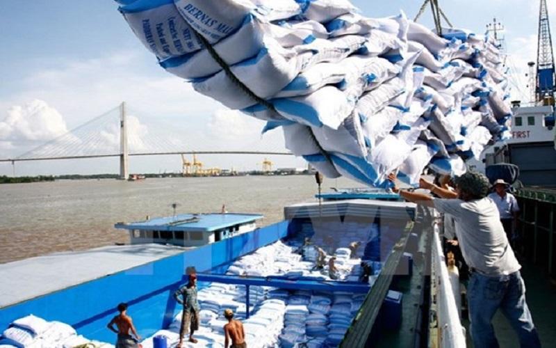 Thị trường xuất khẩu gạo lớn nhất của Việt Nam giảm mạnh