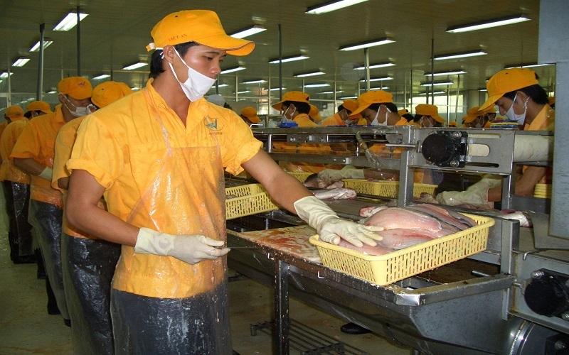 Cá tra của Vĩnh Hoàn bán vào Mỹ được áp thuế chống bán giá 0%