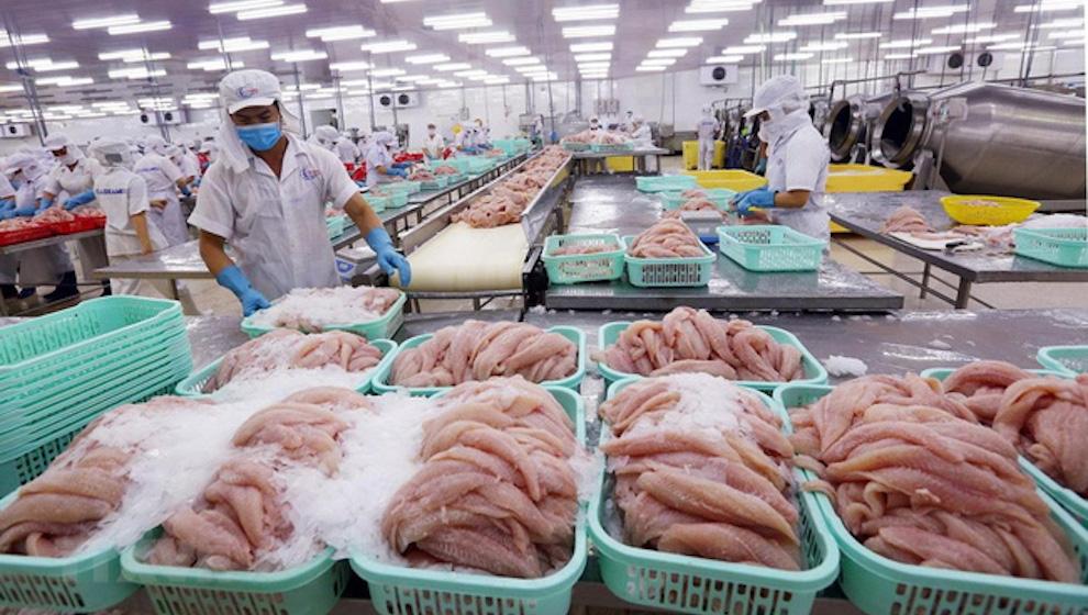 Xuất khẩu nông lâm thuỷ sản 6 tháng đầu năm thặng dư 4,5 tỷ USD