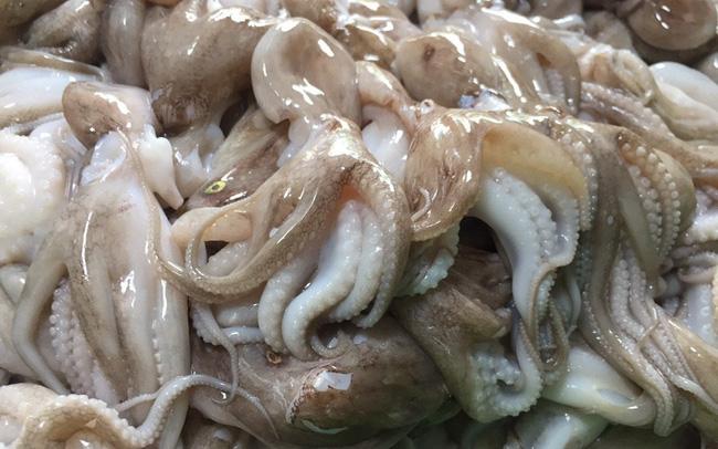 """Xuất khẩu mực, bạch tuộc của Indonesia sang Nhật Bản tăng 150%, Việt Nam có """"đối thủ"""" mới"""