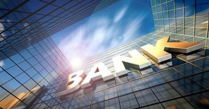 Vì sao Pyn Elite đầu tư lượng lớn cổ phiếu Ngân hàng trong danh mục?