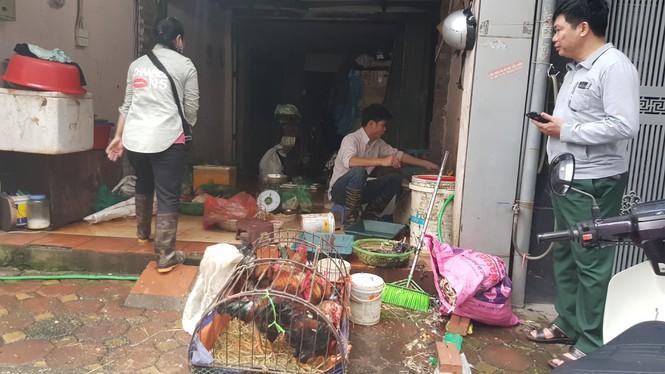 30 tết, hà nội, chợ tết, giá cả, leo thang, thịt lợn - ảnh 9
