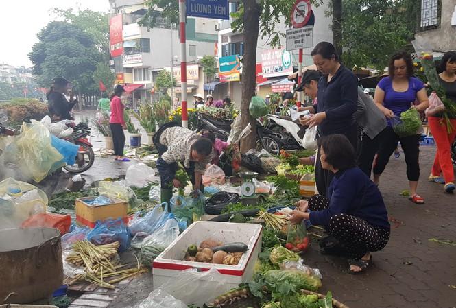Hà Nội: Giá thịt lợn, thịt gà tăng kỷ lục, người dân chen nhau mua 30 Tết