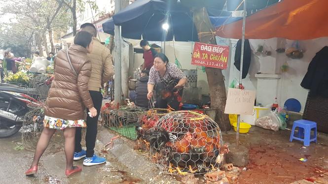 30 tết, hà nội, chợ tết, giá cả, leo thang, thịt lợn - ảnh 7