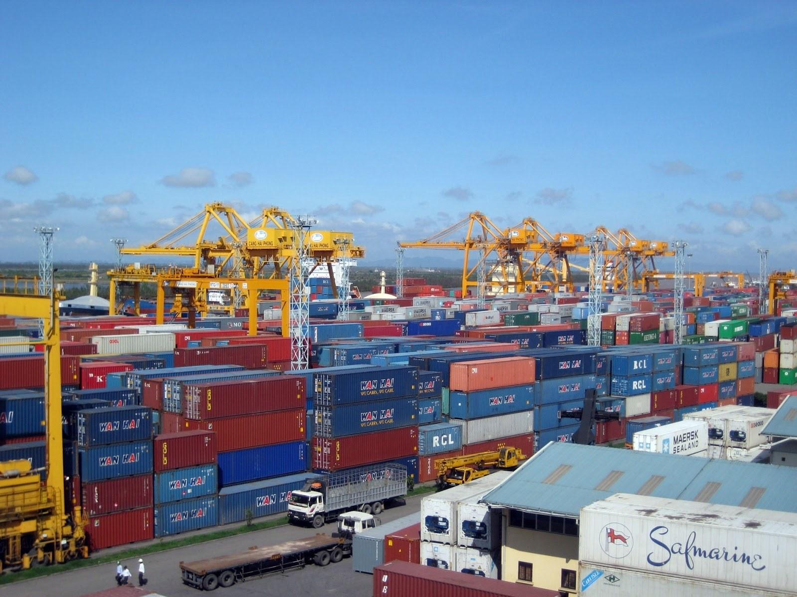 Tân cảng Sài Gòn bán đấu giá gần 300 vỏ container rỗng