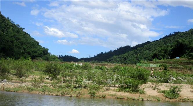 Thanh Hoá phê duyệt chuyển đổi 37,64 ha rừng sang xây thủy điện Sông Âm